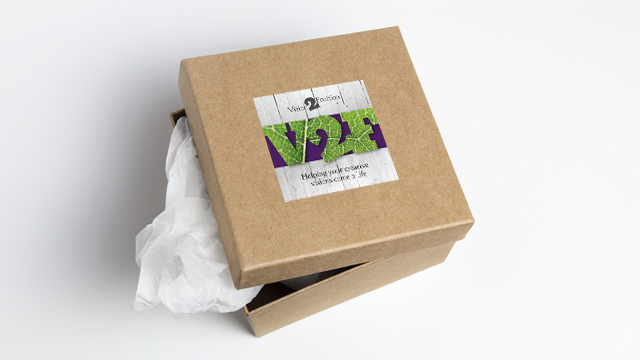 Vision2Fruition packaging