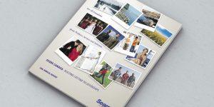 Sears Annual Report